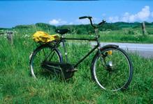 2753 bike