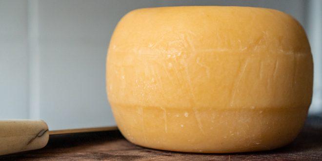 Cheese joke