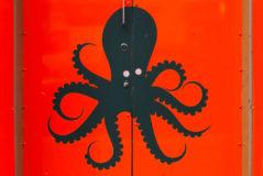 Tickled_Octopus_GrownUps