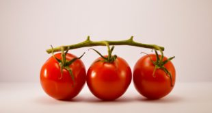 Tomato joke